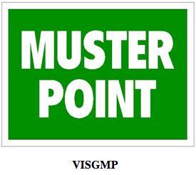 visgmp